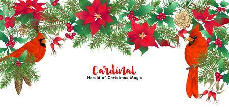 Uccello cardinale e corona di Natale di abete rosso, pino, stella di Natale Modello per carta, banner, buono regalo, etichetta. Illustrazione vettoriale colorata