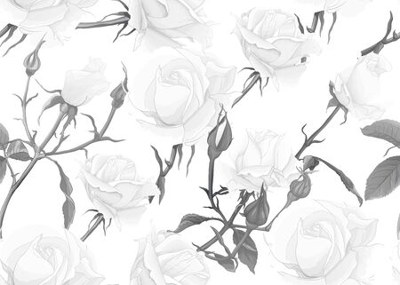 White roses seamless pattern. On beige background. Vector illustration. In monochrome gray colors