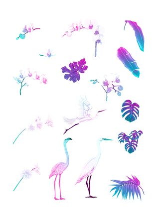 Set of tropical plans, flowers and birds. Stickers, elements for design. Isolated on white background in neon, fluorescent colors. Colored vector illustration.