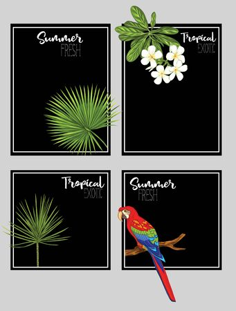 Set of text boxes for bullet journal or notes with tropical plans, flowers and birds. Stickers, elements for design on black background. Vector illustration..