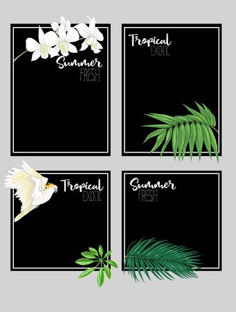 Set of text boxes for bullet journal or notes with tropical plans, flowers and birds. Stickers, elements for design on black background. Vector illustration.. Stock Vector - 132896133