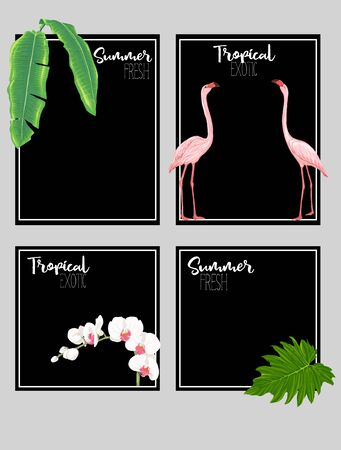 Set of text boxes for bullet journal or notes with tropical plans, flowers and birds. Stickers, elements for design on black background. Vector illustration.. Stock Vector - 132901255