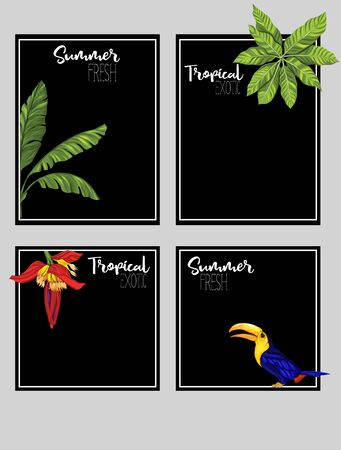 Set of text boxes for bullet journal or notes with tropical plans, flowers and birds. Stickers, elements for design on black background. Vector illustration.. Stock Vector - 132901164