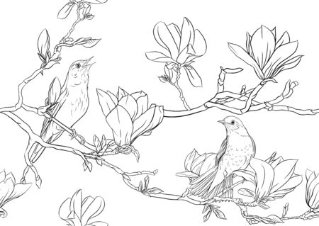Magnolia tree branch with flowers and nightingale Seamless pattern, background. Outline hand drawing vector illustration..