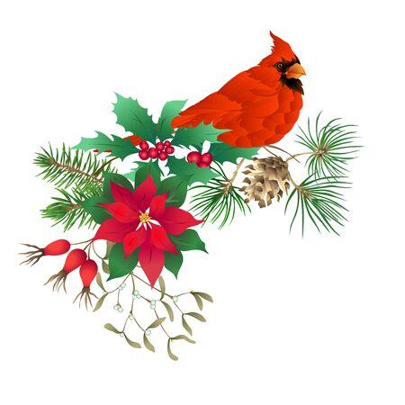 Uccello cardinale - il simbolo del Natale. Ghirlanda natalizia di piante invernali. Elemento per il design. Illustrazione vettoriale colorata. Isolato su sfondo bianco..