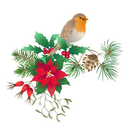 Robin bird - a symbol of Christmas. Christmas wreath of winter plants. Element for design. Colored vector illustration. Isolated on white background..