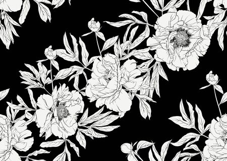 Peony flower. Seamless pattern, background. Black and white graphics. Vector illustration. In botanical style Ilustrace