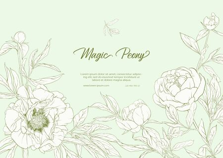White Peony. Template for wedding invitation, greeting card, banner, gift voucher, label. Outline hand drawing vector illustration. On tea green background.. Vector Illustration