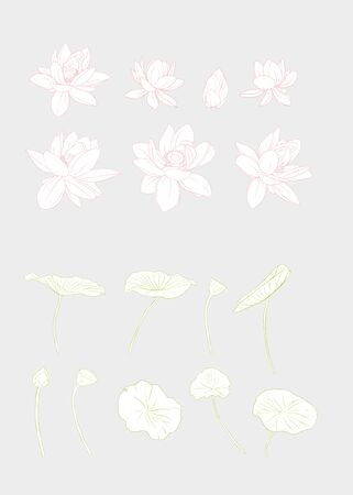 Lotus flower set. Outline hand drawing vector illustration..