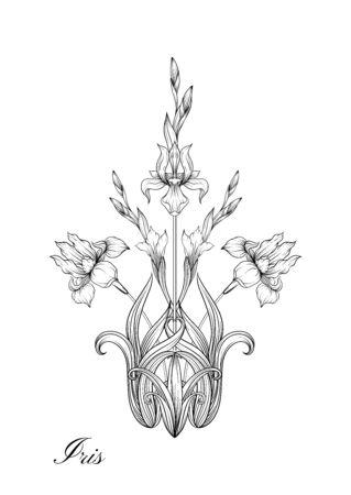Iris flower, fleur-de-lis, flower-de-luce, flag. Element for design. Outline hand drawing vector illustration. In art nouveau style, vintage, old, retro style. In botanical style. Illustration