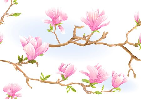 Magnolia tree branch with flowers. Seamless pattern, background. Colored vector illustration. Isolated on white background.. Ilustración de vector