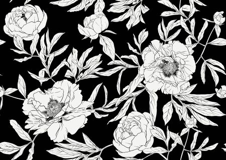 Peony flower. Seamless pattern, background. Black and white graphics. Vector illustration. In botanical style Illusztráció