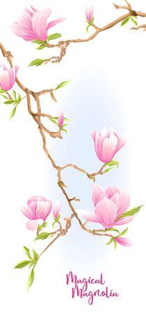 Magnolienbaumzweig mit Blumen. Vorlage für Hochzeitseinladung, Grußkarte, Banner, Geschenkgutschein, Etikett. Farbige Vektorillustration. Isoliert auf weißem Hintergrund.. Vektorgrafik