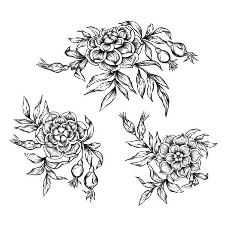 Roses Element for design. Graphic drawing, engraving style. Vector illustration. In art nouveau style, vintage, old, retro style Stock Illustratie