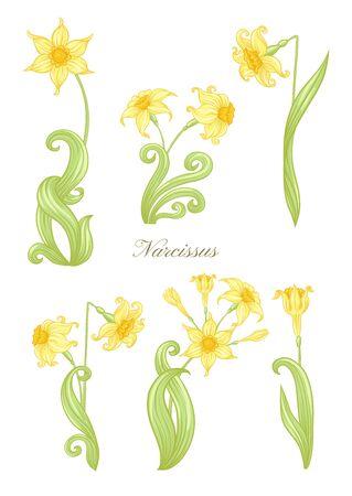 Narzisse. Satz von Elementen für das Design Farbige Vektorillustration. Im Jugendstil, Vintage, Alt, Retro-Stil. In sanften gelben Farben. Isoliert auf weißem Hintergrund..