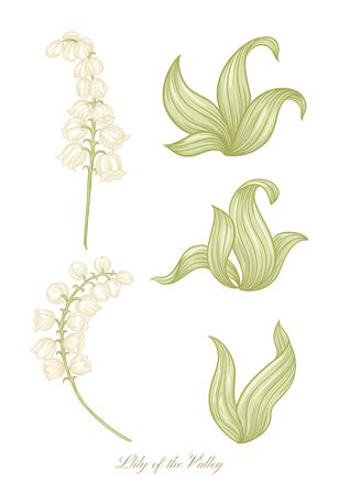 Lily of the valley, may-lily color illustration In art nouveau style, vintage, old, retro style. Vector illustration.