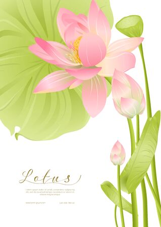 Pink Lotus. Template for wedding invitation, greeting card, banner, gift voucher, label. Vector illustration