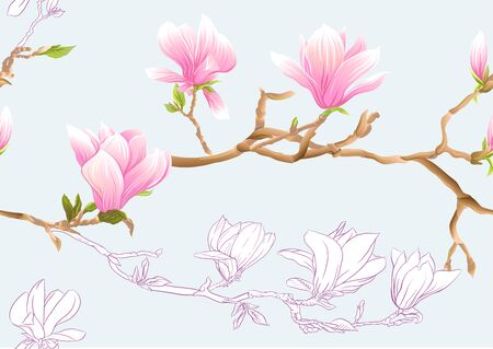 Magnolia tree branch with flowers. Seamless pattern, background. Colored and outline design. Vector illustration. on sky blue background.. Ilustrace