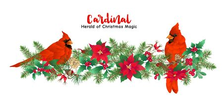 Cardinal bird and Christmas wreath of spruce, pine, poinsettia Template for card, banner, gift voucher, label. Colored vector illustration Stock Illustratie
