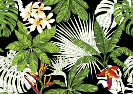 Tropikalne rośliny i kwiaty. Wzór, tło. Kolorowy i konturowy projekt. Ilustracja wektorowa na białym tle na czarnym tle