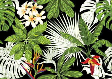 Tropische planten en bloemen. Naadloze patroon, achtergrond. Gekleurd en schetsontwerp. Vectorillustratie geïsoleerd op zwarte achtergrond