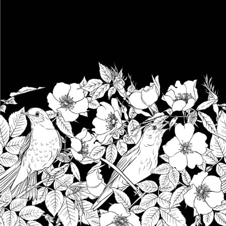 Seamless pattern, background with dog-rose, briar, brier, eglantine, canker-rose and nightingale. Template for wedding invitation, greeting card, gift voucher. Black and white graphics. Vector . Ilustrace