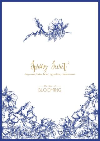 Dog-rose, briar, brier, eglantine, canker-rose. Template for wedding invitation, greeting card, banner, gift voucher. Graphic drawing, engraving style. Vector illustration in blue and white.