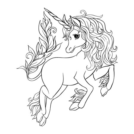 Unicorn isolated on white background. Outline drawing. Vector illustration.