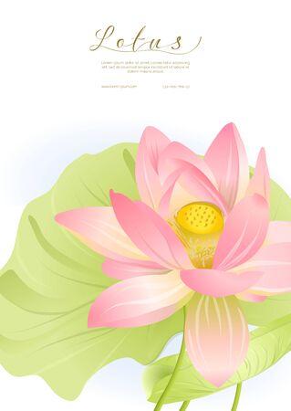 Loto rosa. Plantilla para invitación de boda, tarjeta de felicitación, banner, vale de regalo, etiqueta. Ilustración vectorial