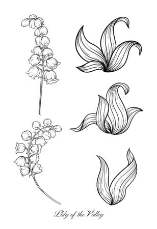 Lily of the valley, may-lily Element for design. Outline hand drawing vector illustration. In art nouveau style, vintage, old, retro style. In botanical style. Çizim