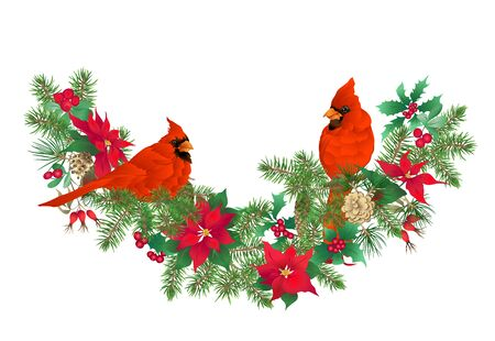 Cardinal bird - the symbol of Christmas. Christmas wreath of winter plants. Element for design. Colored vector illustration. Isolated on white background.. Illustration