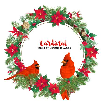 Cardinal bird and Christmas wreath of spruce, pine, poinsettia, dog rose, mistletoe, fir. Template for card, banner, gift voucher, label. Colored vector illustration..