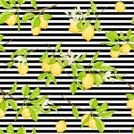 Lemon tree branch with lemons, flowers and leaves. Seamless pattern, background. Colored vector illustration. On black and white stripes background.. Ilustrace