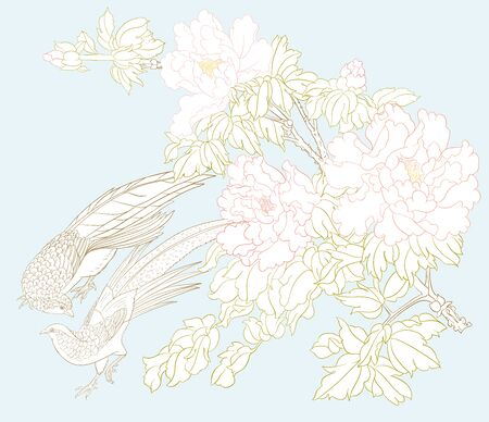Peony tree branch with flowers with pheasants in the style of Chinese painting on silk Set of elements for design Colored vector illustration. Outline hand drawing vector illustration..