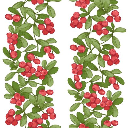 Cranberry. Seamless pattern, background. Graphic drawing, engraving style. Vector illustration isolated on white background Ilustracja