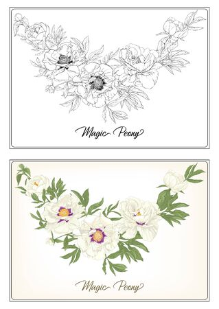 White Peony. Coloring page for the adult coloring book. with colored sample. Colored and outline design. Vector illustration. Isolated on white background Banco de Imagens - 133734391