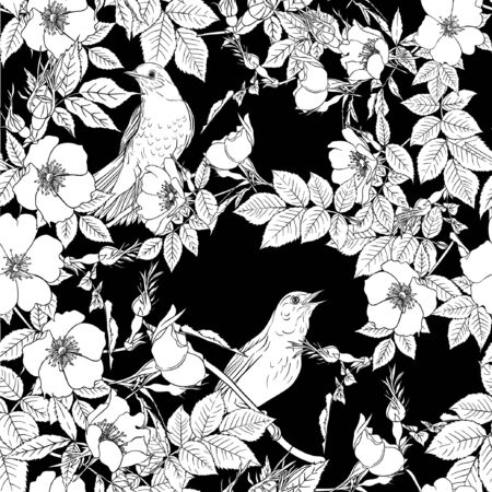 Seamless pattern, background with dog-rose, briar, brier, eglantine, canker-rose and nightingale. Template for wedding invitation, greeting card, gift voucher. Black and white graphics. Vector . Illustration