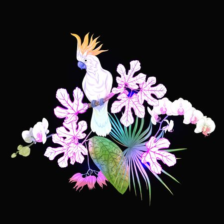 A composition of tropical plants, palm leaves, monsters and white orchids with cockatoo parrot In botanical style Colored vector illustration in neon, fluorescent colors. Colored and outline design. Çizim