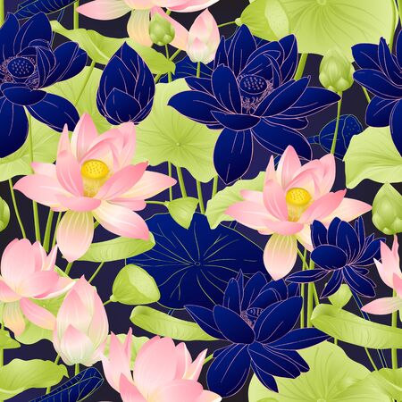 Lotus flowers seamless pattern. Vector illustration. On blue background. Colored and outline design. Illustration