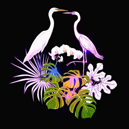 A composition of tropical plants, palm leaves, monsters and white orchids with heron In botanical style Colored vector illustration in neon colors. Colored and outline design. On black background.