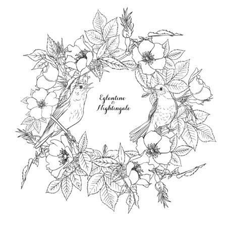 Dog-rose, briar, eglantine, canker-rose and nightingale. Template for wedding invitation, greeting card, gift voucher. Graphic drawing, outline Vector illustration