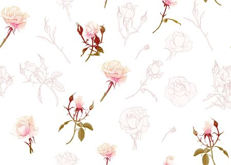 Rose roses seamless pattern. Isolated on white background. Colored and outline design. Vector illustration.