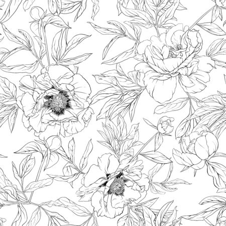 Peony flowers. Seamless pattern, background. Outline hand drawing vector illustration. In botanical style Isolated on white background..