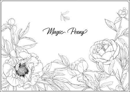 Peonía blanca. Página para colorear para el libro de colorear para adultos. Ilustración de vector de dibujo a mano de contorno. Aislado sobre fondo blanco.
