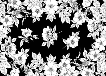Seamless pattern, background with dog-rose, briar, brier, eglantine, canker-rose and nightingale. Template for wedding invitation, greeting card, gift voucher. Black and white graphics. Vector.