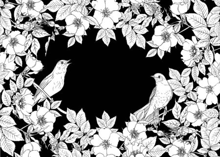 Seamless pattern, background with dog-rose, briar, brier, eglantine, canker-rose and nightingale. Template for wedding invitation, greeting card, gift voucher. Black and white graphics. Vector . Ilustracja