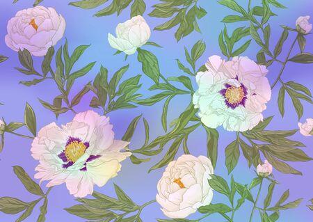 Flores de peonía blanca. Patrón sin costuras, fondo. Ilustración de vector de color. En estilo botánico En colores pastel ultravioleta claros sobre fondo azul y rosa de malla Ilustración de vector