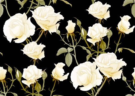 White roses seamless pattern. Isolated on black background. Vector illustration.