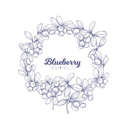 Blueberry. Element for design. Good for product label. Graphic drawing, engraving style. Colored vector illustration