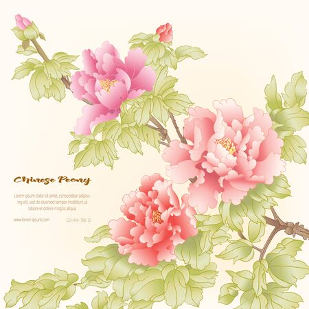 Peony tree branch with flowers in the style of Chinese painting on silk Template for wedding invitation, greeting card, banner, gift voucher, label. Colored vector illustration.. Ilustração